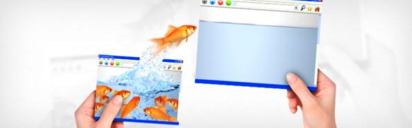 Portálüzemeltetés, webfejlesztés